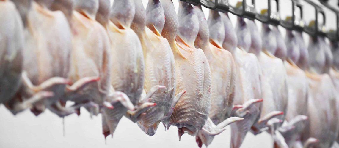 epa registered disinfectant for poultry equipment