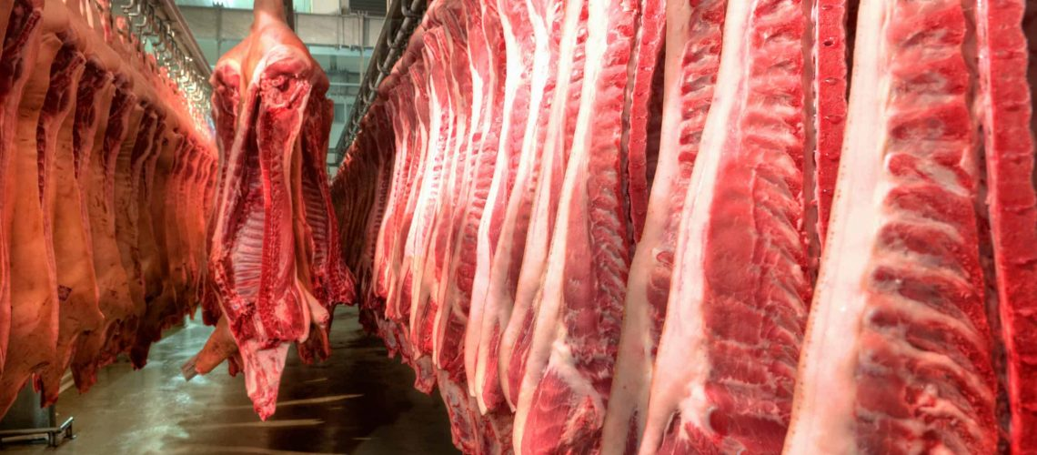 meat processing sanitation protocols